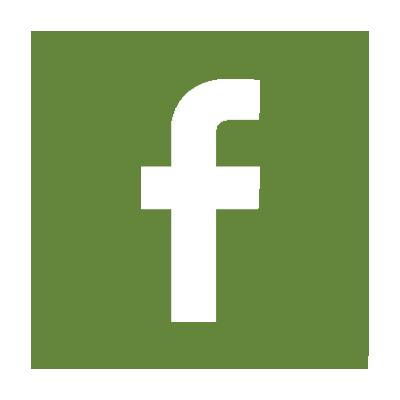 Facebook FLEX