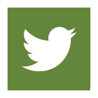 Twitter FLEX