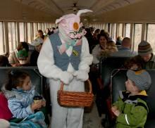 bunny wilsonmcfet oc
